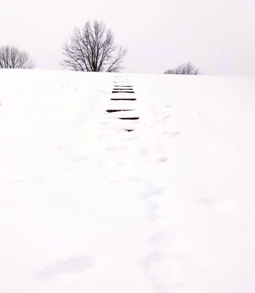 Psalm Photos – 24 – SnowySteps