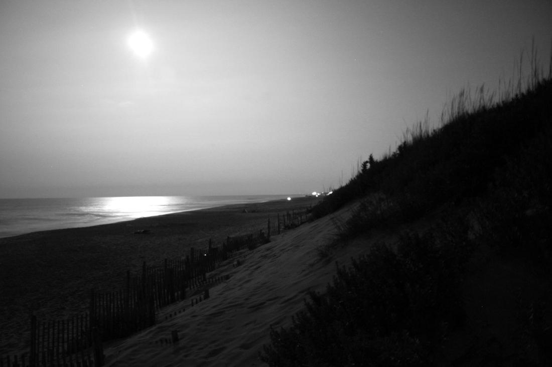 beach moon