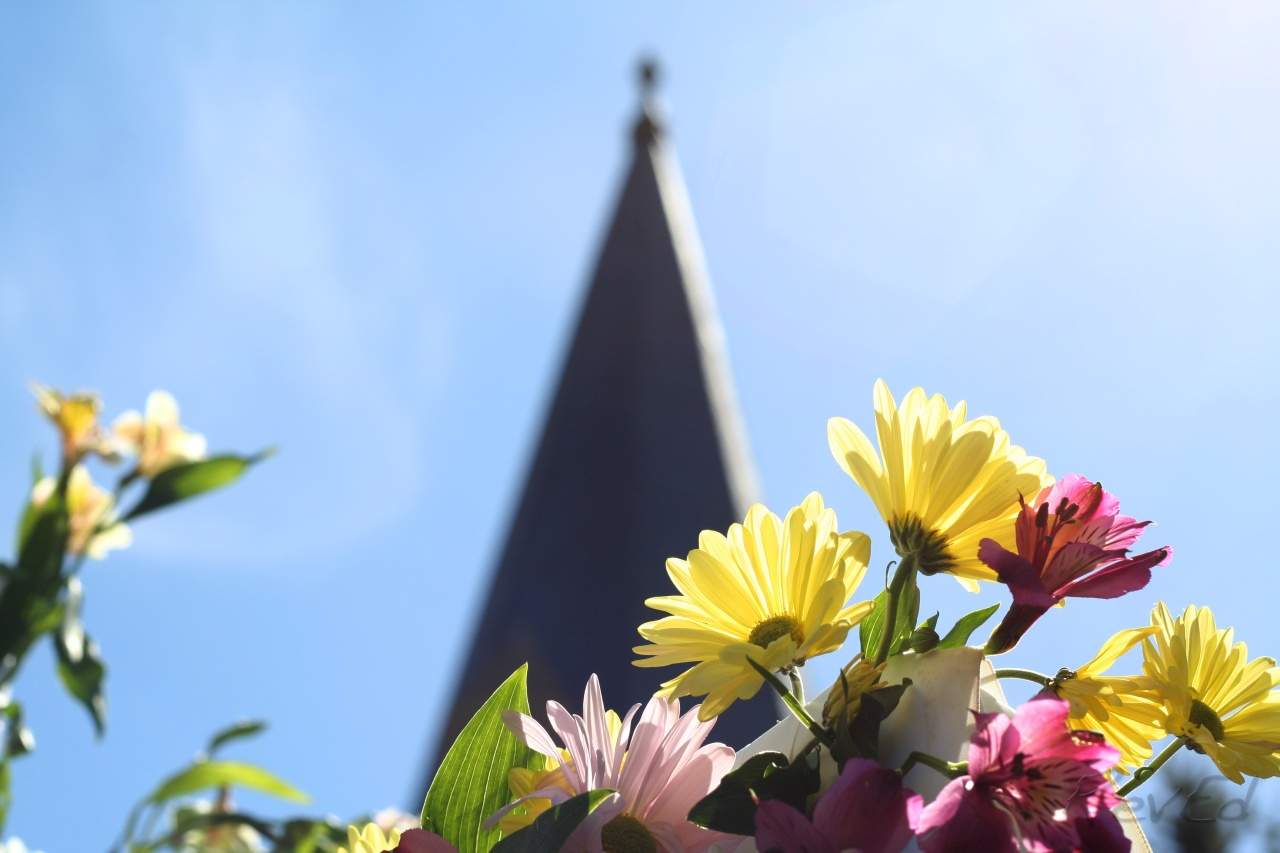 Psalm Photos – 95 –Easter