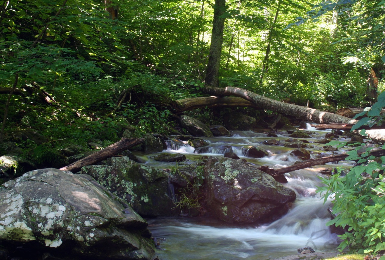Psalm Photos – 132 –Flowing