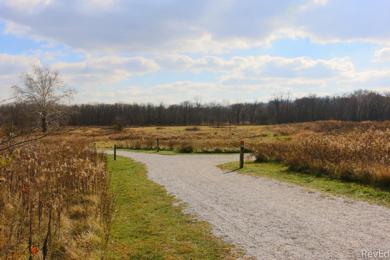 Romans Photos – 6:15-19 –Paths