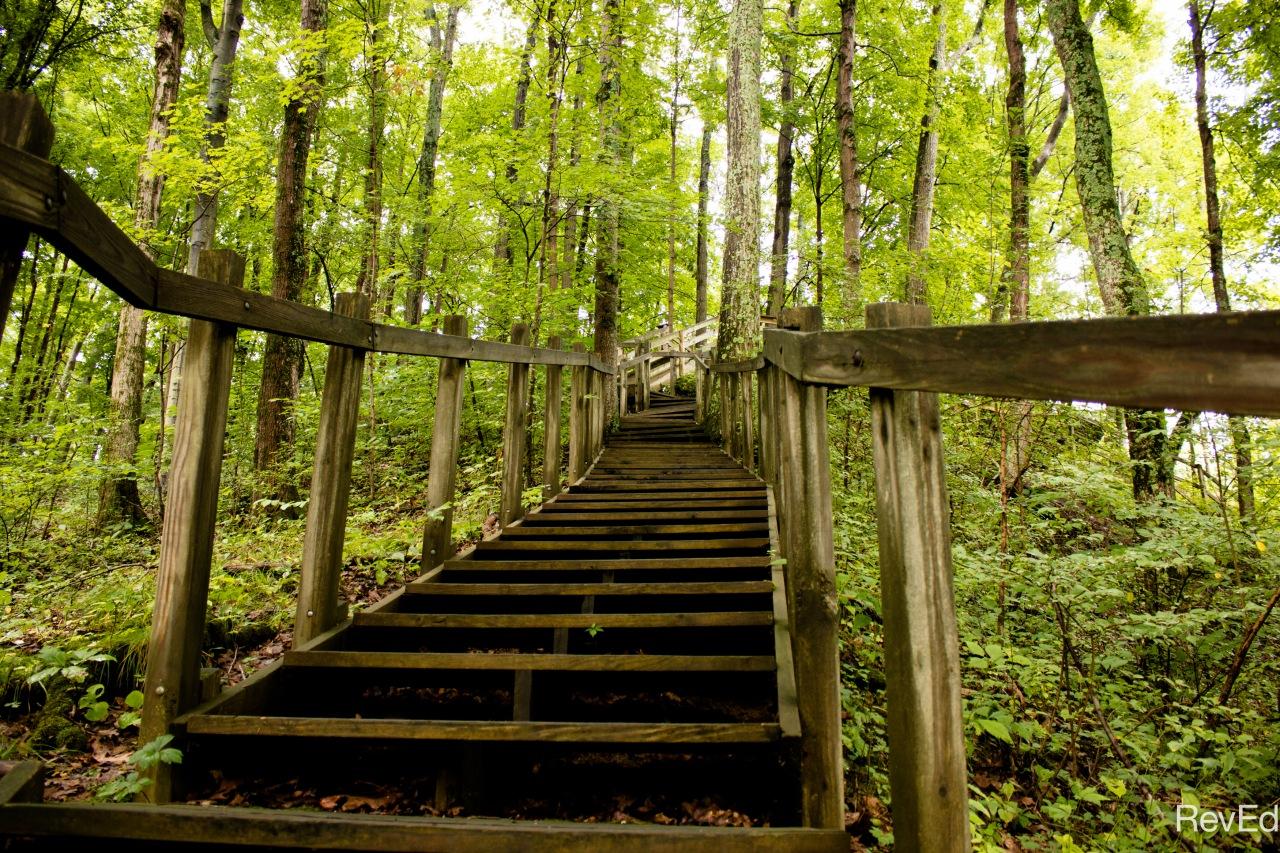 Imago Adventus – 08 –Stairs