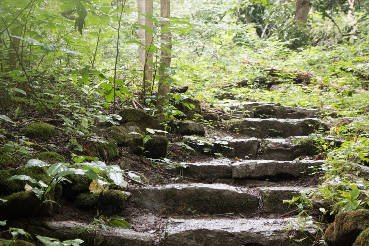 Imago Romans – 10:5-21 –Steps