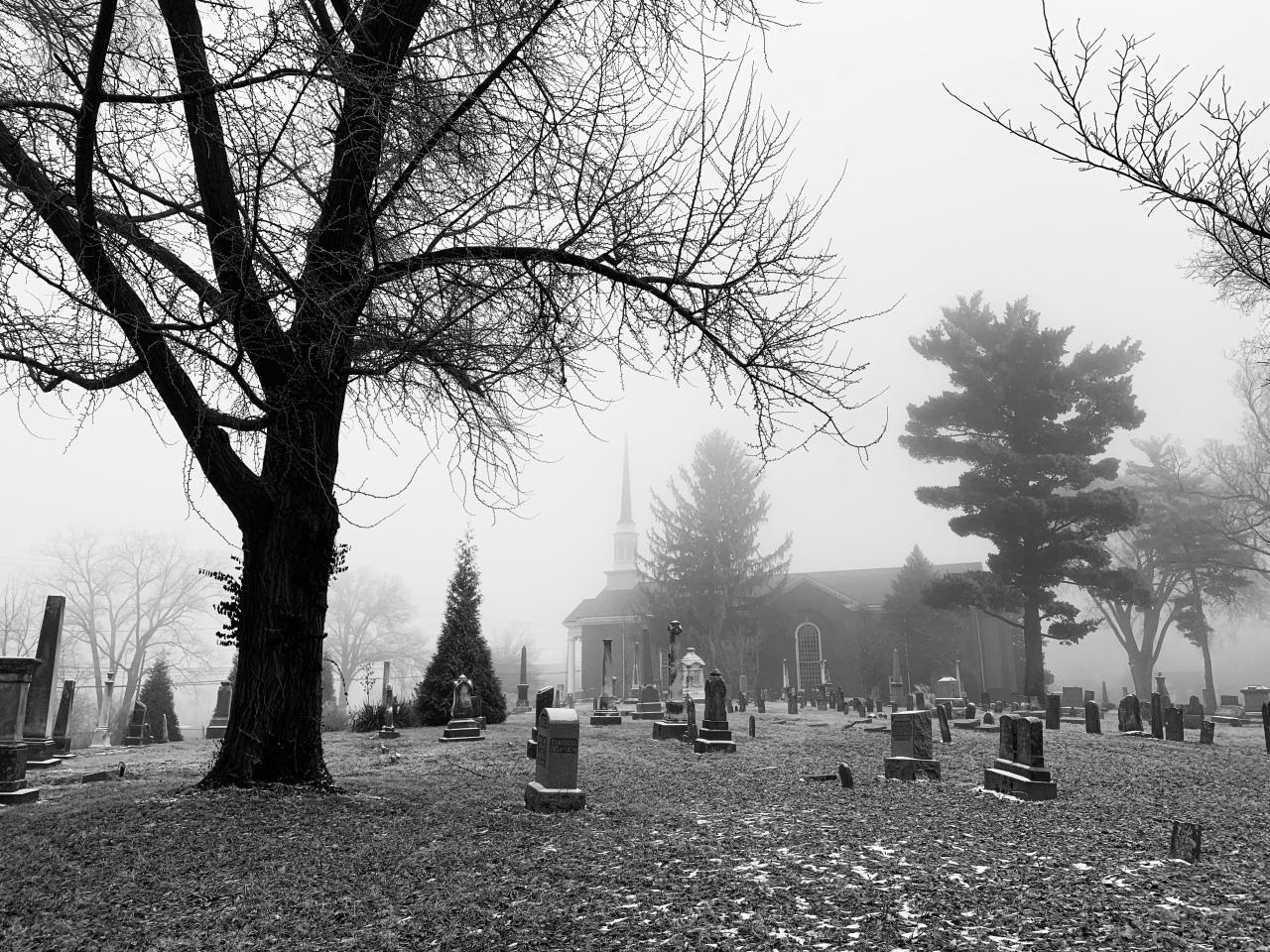 Mark 5 – Fog – AYWJ08