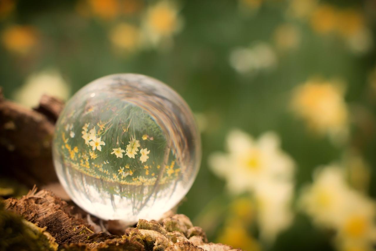 Matthew 19 & 20 – The World Turned UpsideDown