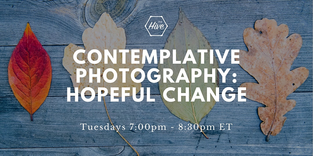 An Invitation to Contemplative Photography